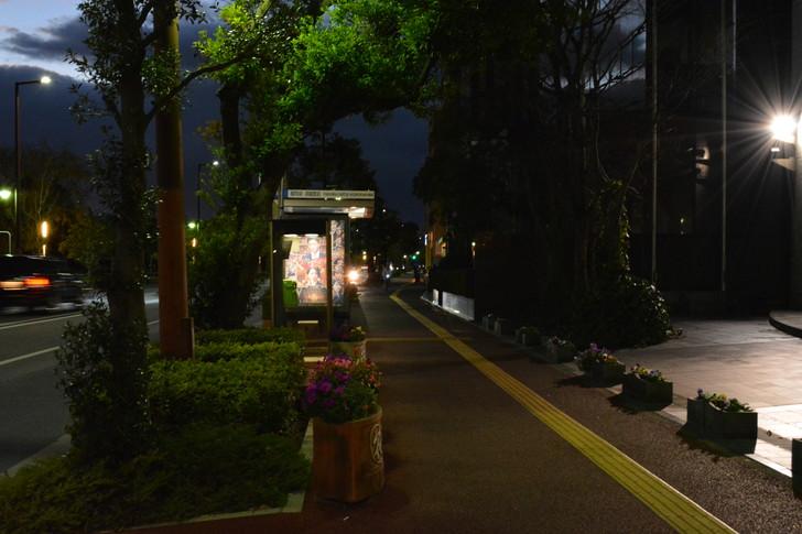 【福岡散歩日誌7】夕方の「舞鶴・赤坂辺り」を散歩【12月】:福岡城・鴻臚館前のバス停