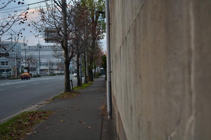 福岡散歩日誌:那の津の道路