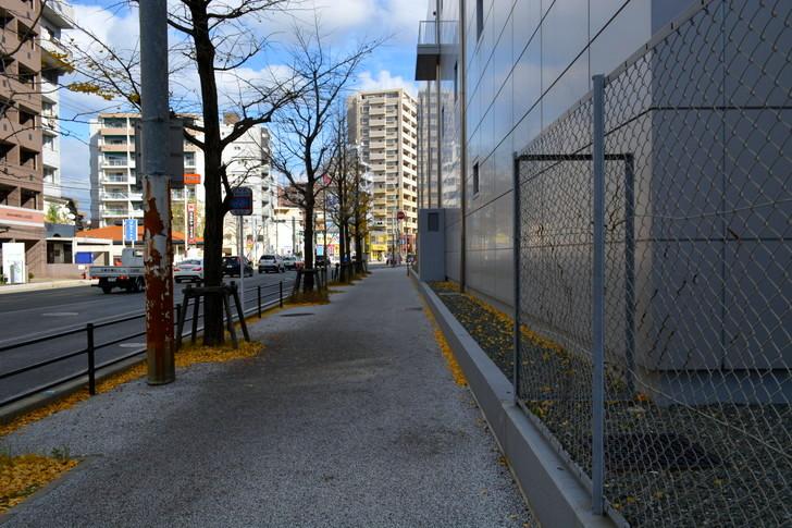 福岡散歩日誌:歩道