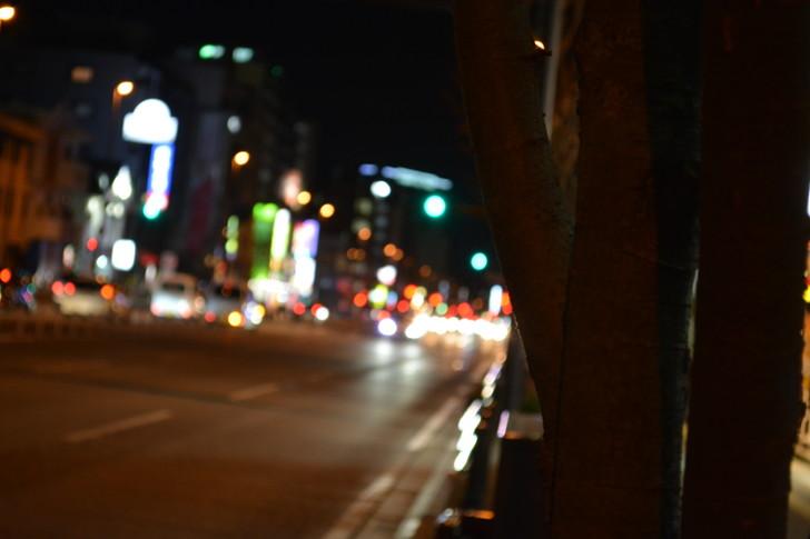 【福岡散歩日誌6】「渡辺通り」から「那の川」辺りを散歩【12月】:「渡辺通り」から「那の川」辺りを散歩:最後にそれっぽい写真盗って終わり