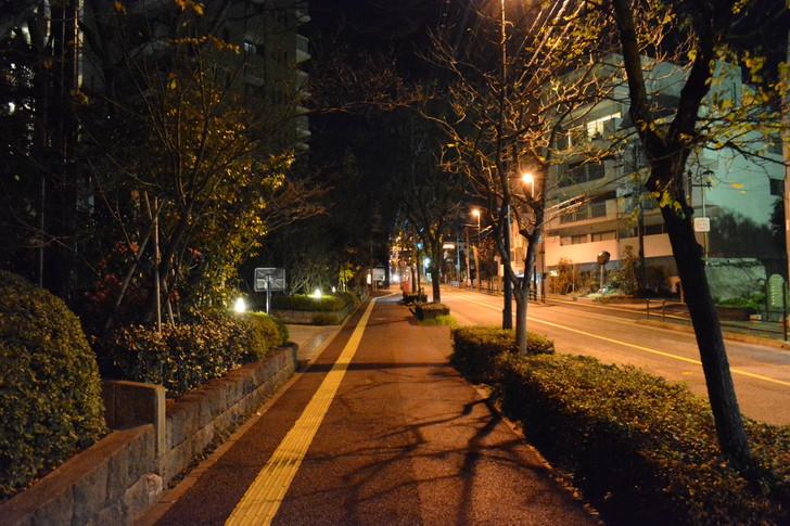 上品で有名な「浄水通り」を深夜に散歩
