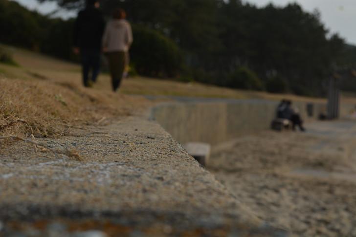 「マリンワールド」と「志賀島」を散歩:地面