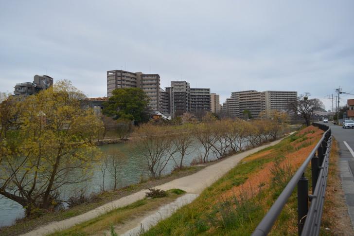 河川敷とマンション群