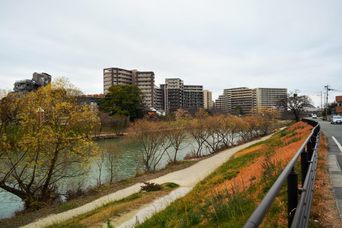 【塩原・五十川】那珂川沿いの河川敷が落ち着ける「西鉄大橋駅~JR竹下駅」を散歩