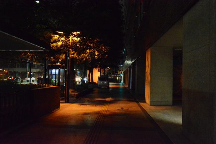 普通に暗い歩道