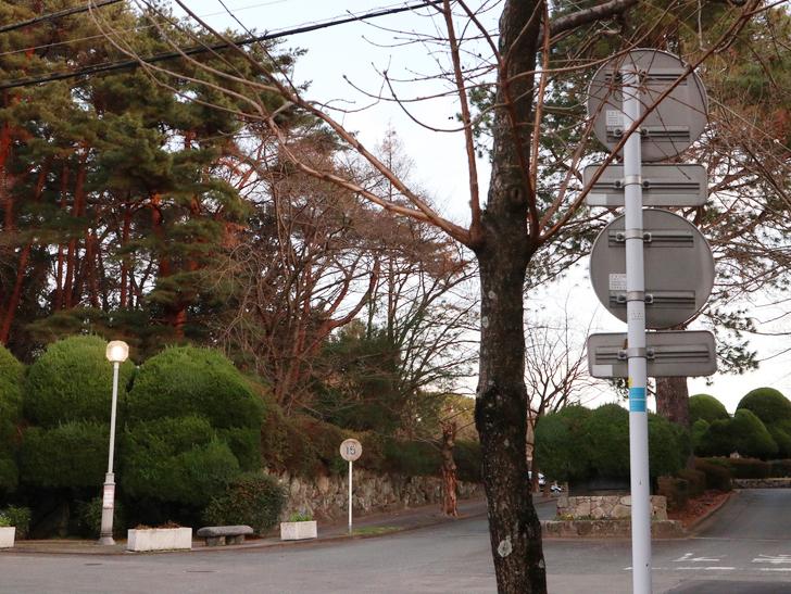 """霊園周りのちょっと不思議な空間「福岡市中央区""""平和""""」を散歩:霊園の周りは緑が多い"""