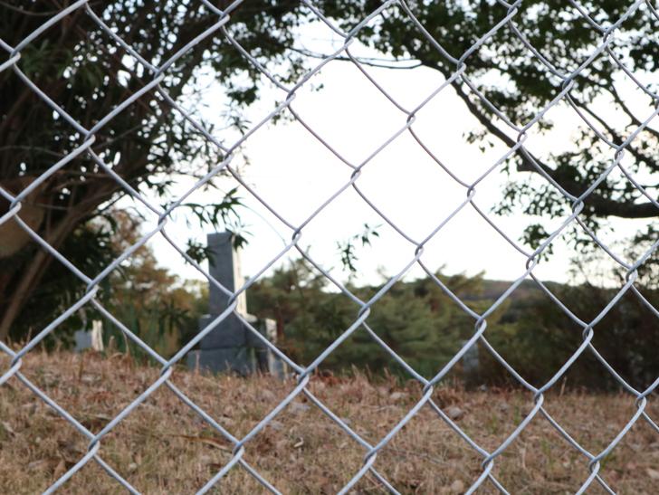"""霊園周りのちょっと不思議な空間「福岡市中央区""""平和""""」を散歩:外から見る墓石"""