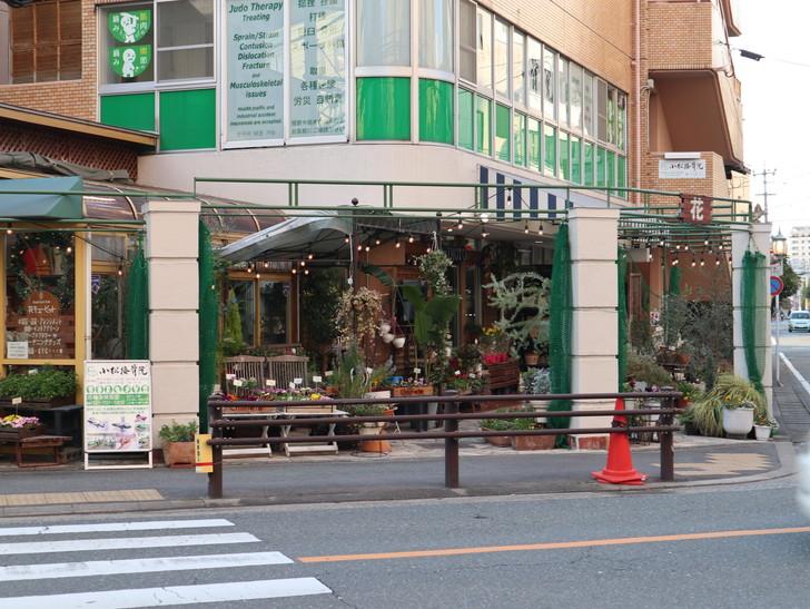 落ち着いた雰囲気の裏道「平尾(山荘通)~薬院大通付近」を散歩:お花屋さん