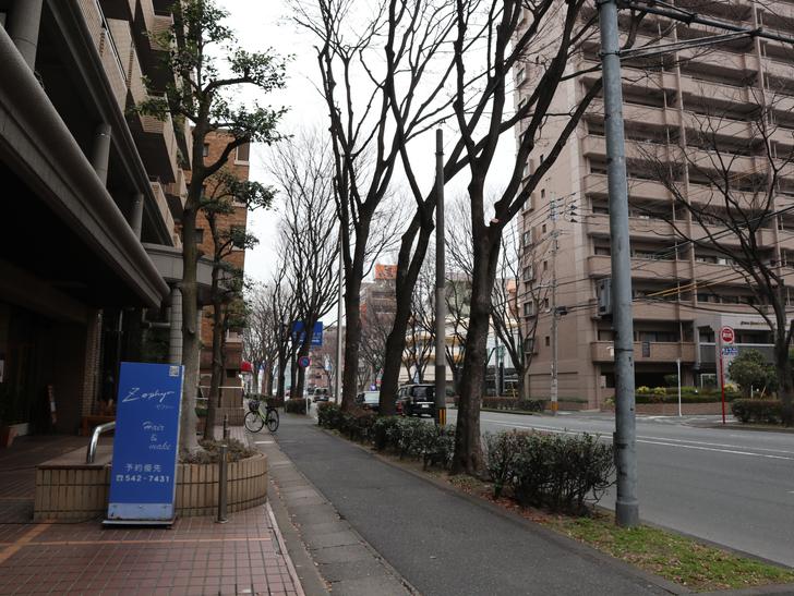 区役所周りの落ち着いた通り「福岡市南区塩原」をゆったり散歩:塩原の通り