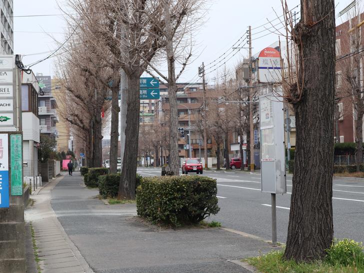 区役所周りの落ち着いた通り「福岡市南区塩原」をゆったり散歩:「塩原バス停」。表示が消えかけている