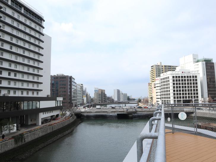 【博多】「水上公園」からの眺めが最高!:昭和通り方面