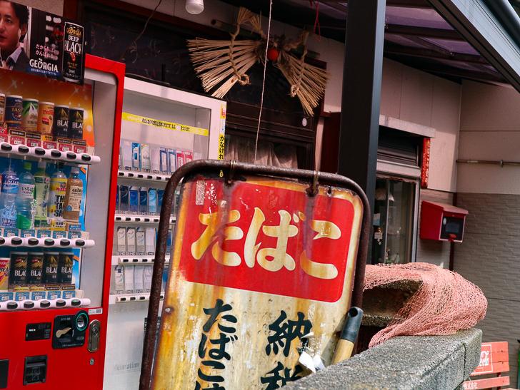 島民328人に対し「猫民100匹」!「相島(あいのしま)」に行ってきた:たばこ屋と自販機
