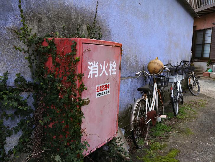 島民328人に対し「猫民100匹」!「相島(あいのしま)」に行ってきた:ツタが生えた消火栓