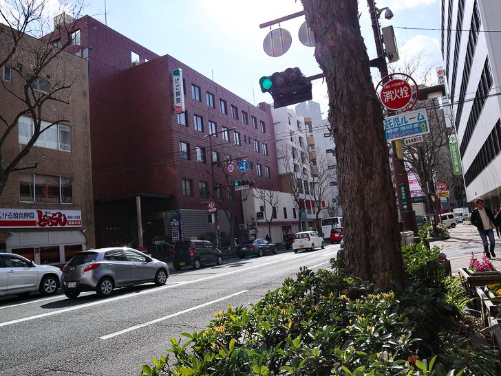 オシャレで趣のある街並み「警固交差点~大濠公園近く」までを散歩:街路樹と国体道路2