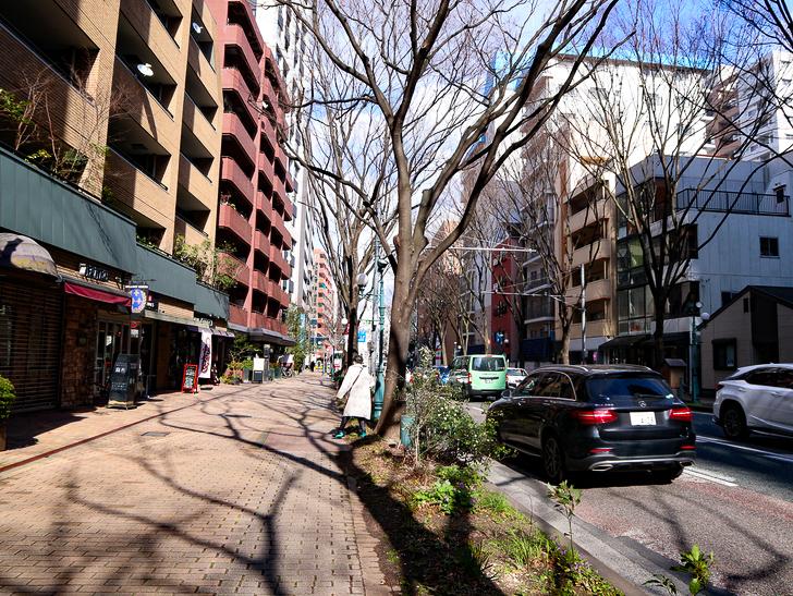 オシャレで趣のある街並み「警固交差点~大濠公園近く」までを散歩:振り返って撮影