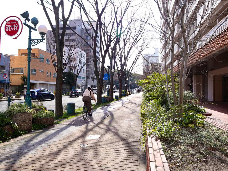 オシャレで趣のある街並み「警固交差点~大濠公園近く」までを散歩:歩道