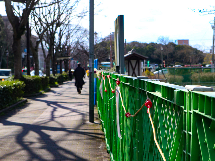 オシャレで趣のある街並み「警固交差点~大濠公園近く」までを散歩:即席フェンス
