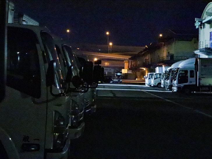 癒される異空間「深夜の須崎ふ頭」を散歩:たくさんのトラック