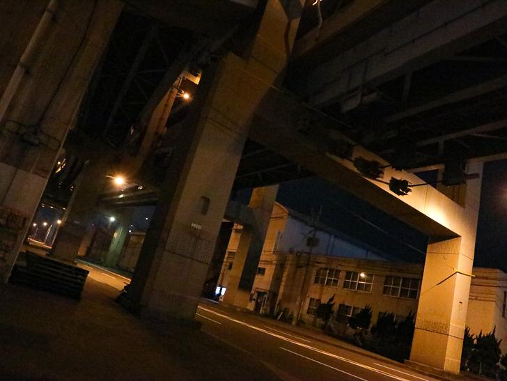 癒される異空間「深夜の須崎ふ頭」を散歩:いよいよ高架下をくぐる