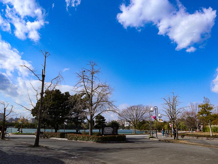 大きな池越しの都会「大濠公園」をまったり散歩:大濠公園で見る青空
