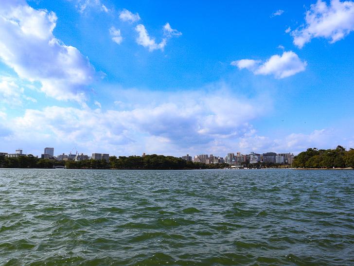 大きな池越しの都会「大濠公園」をまったり散歩:池とビル群と青空