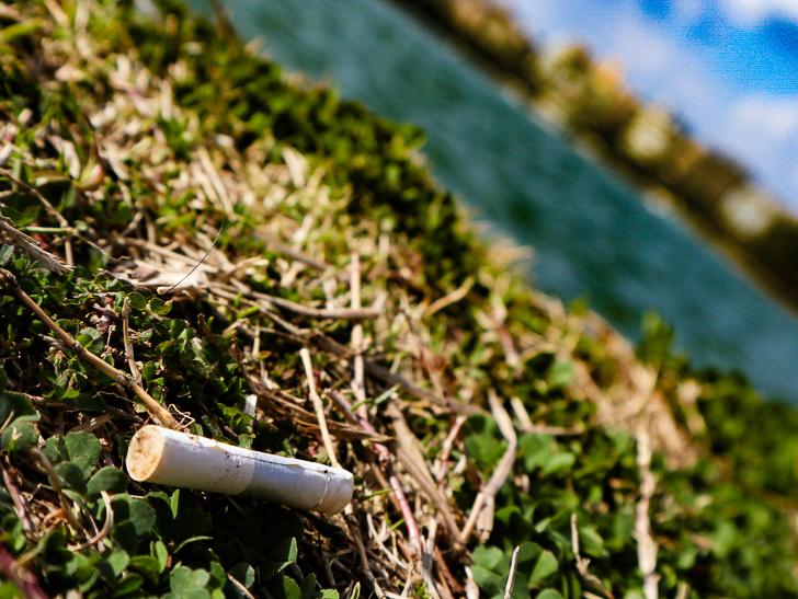 大きな池越しの都会「大濠公園」をまったり散歩:タバコの吸い殻と池