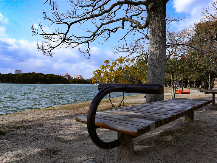 大きな池越しの都会「大濠公園」をまったり散歩:腹筋?するベンチ
