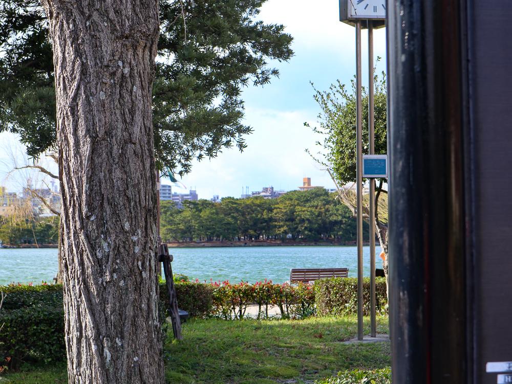 都会の中の大きな池「大濠公園」をまったり散歩
