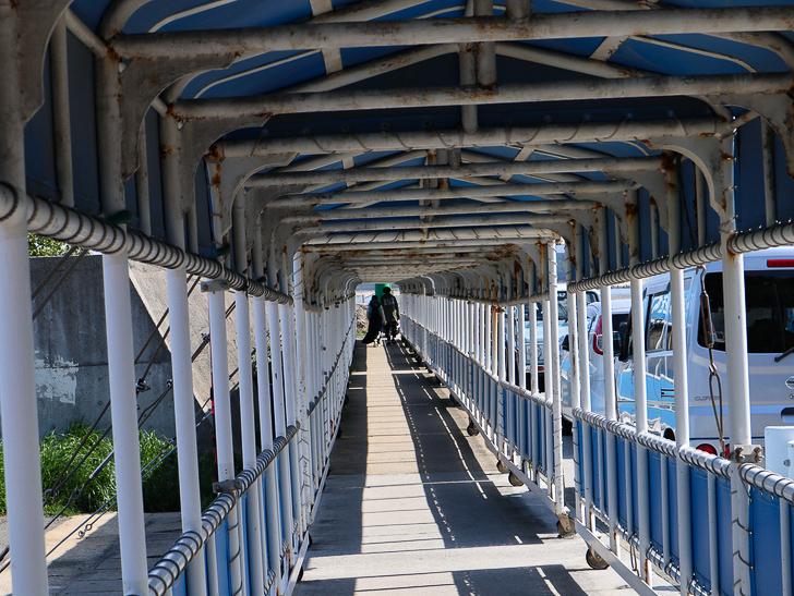 「西鉄新宮駅~相島渡船新宮待合所」までの徒歩ルートが絶景だった:フェリー乗り場までの道