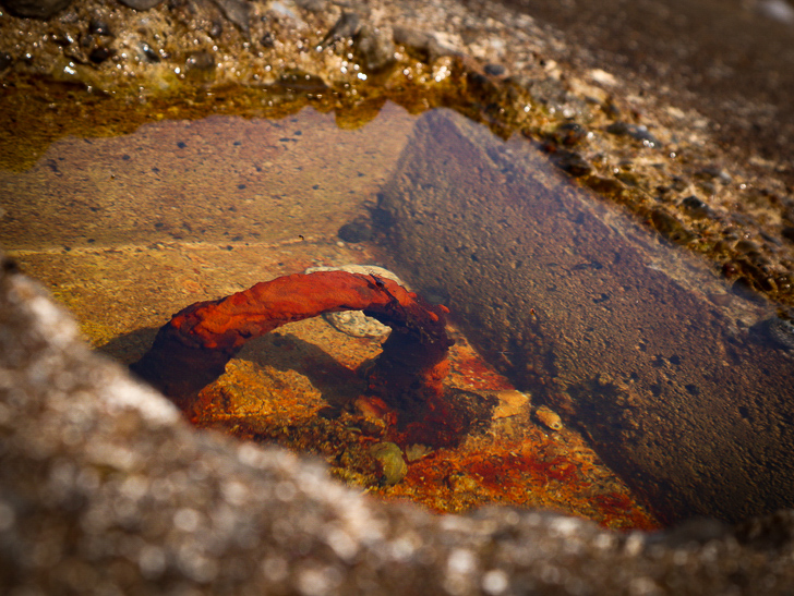「西鉄新宮駅~相島渡船新宮待合所」までの徒歩ルートが絶景だった:穴に溜まった水
