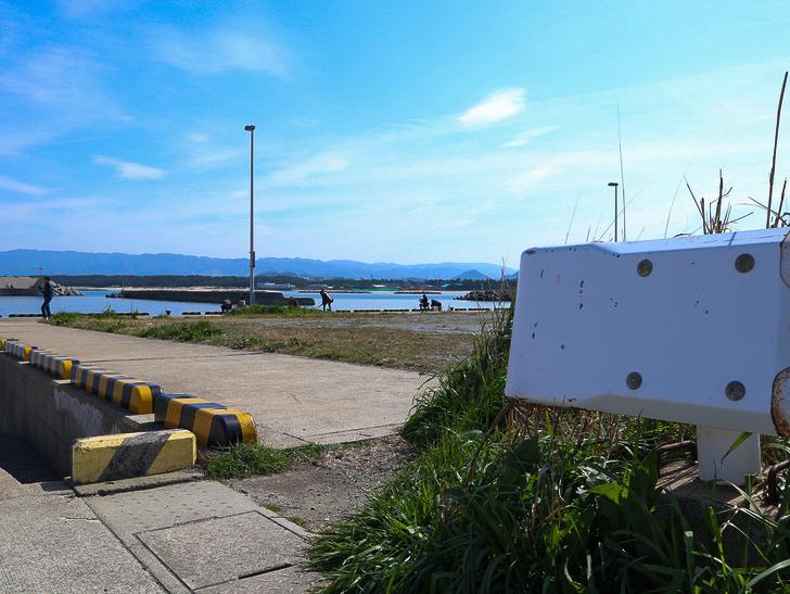 「西鉄新宮駅~相島渡船新宮待合所」までの徒歩ルートが絶景だった:ガードレールと海釣りを楽しむ人々