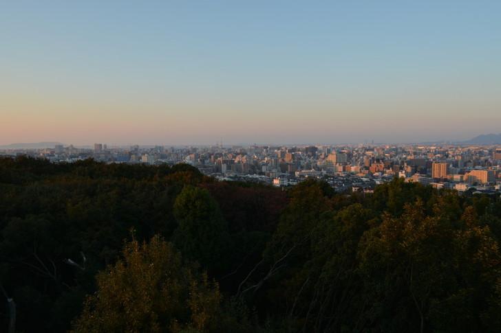 森と都会の背景。