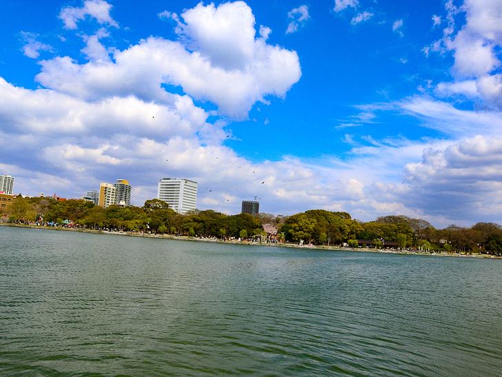 池の真ん中の島から撮影した