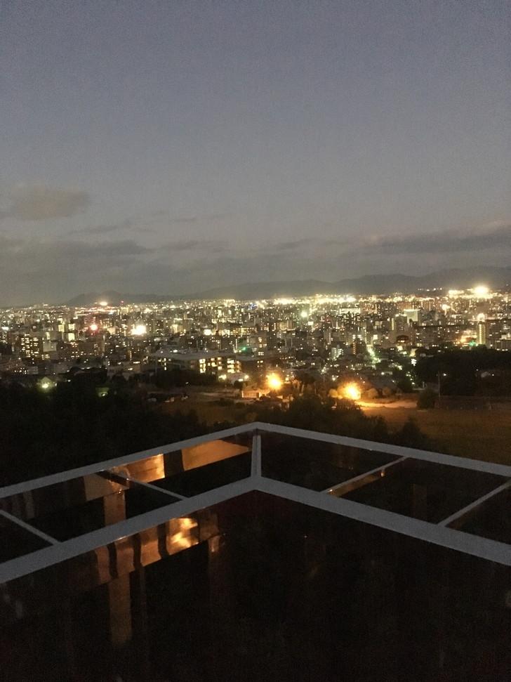 iphoneで撮ろうとした夜景。ISO感度上げまくったみたいな感じですかね