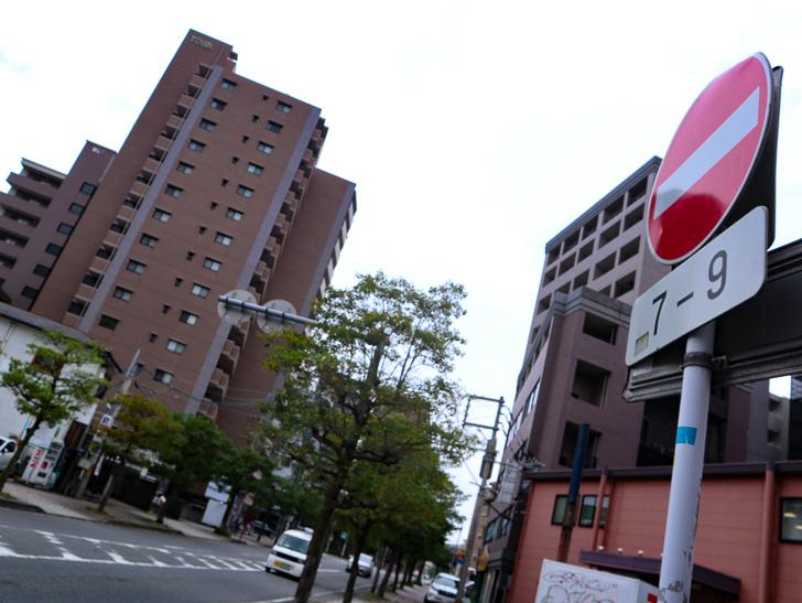 【南区大楠2丁目】静かな並木道をゆったり散歩:「進入禁止」の標識と道路