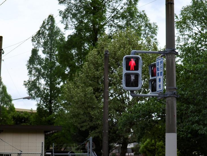 【南区大楠2丁目】静かな並木道をゆったり散歩:歩行者用信号