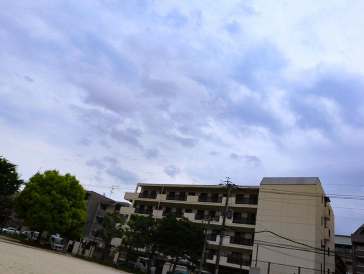 【南区大楠2丁目】静かな並木道をゆったり散歩:堀川公園:園内で撮影した、「マンションと曇り空」