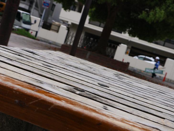 【南区大楠2丁目】静かな並木道をゆったり散歩:堀川公園:ベンチ
