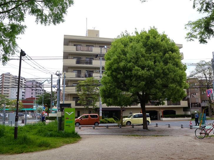 【南区大楠2丁目】静かな並木道をゆったり散歩:堀川公園の出口