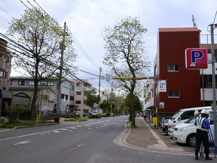 【南区大楠2丁目】静かな並木道をゆったり散歩:大楠2丁目の通り