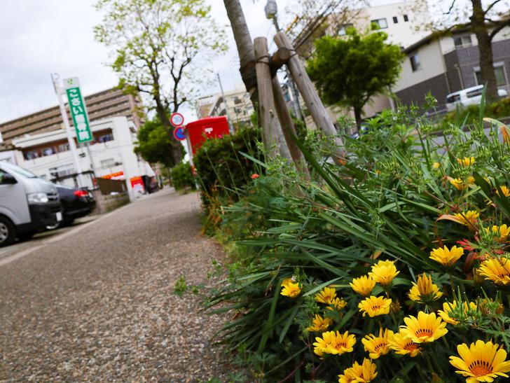 【南区大楠2丁目】静かな並木道をゆったり散歩:花壇とポスト