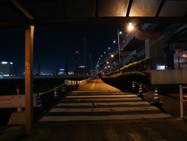 【ベイサイドプレイス博多(深夜)】やっぱり夜の海は良い: 横断歩道