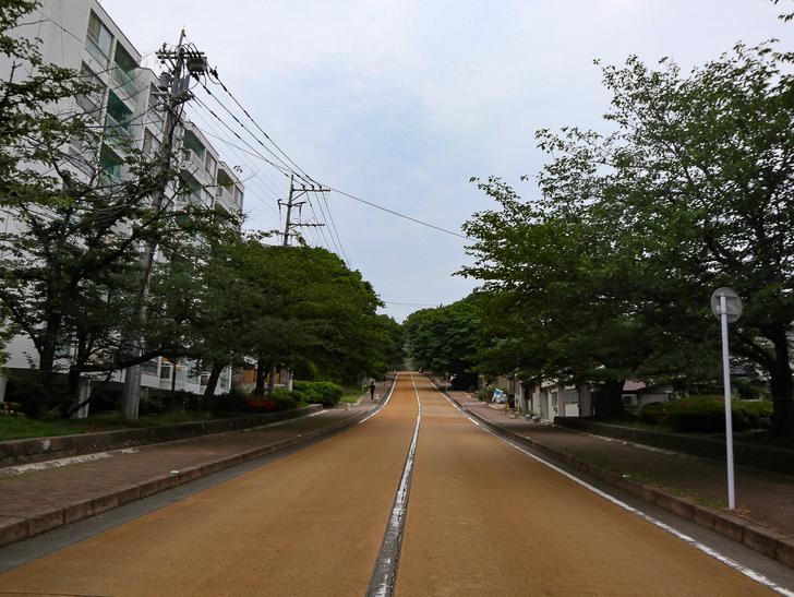 天神近くにある避暑地「西公園」「光雲神社」を散歩: 黄色く塗られた道路