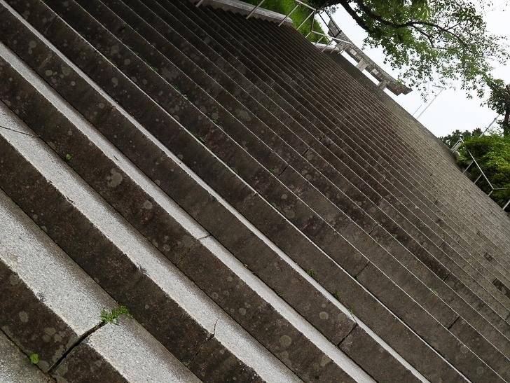 天神近くにある避暑地「西公園」「光雲神社」を散歩: この階段を登ります