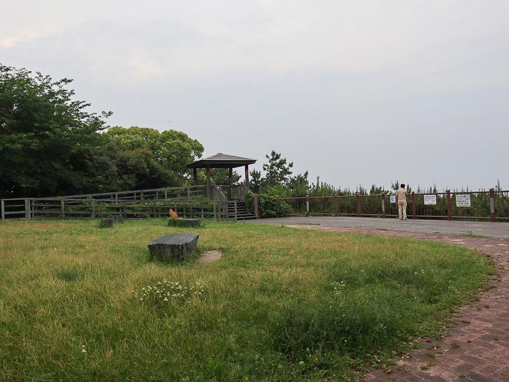 天神近くにある避暑地「西公園」「光雲神社」を散歩: 展望スペース
