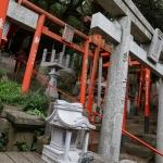 天神近くにある避暑地「西公園」「光雲神社」を散歩