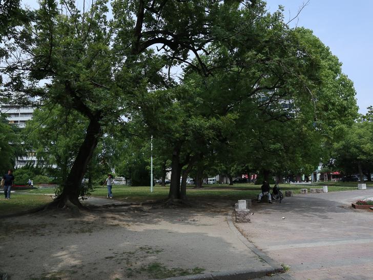 【中央区・博多区】「築港本町」あたりをゆったり散歩: 須崎公園