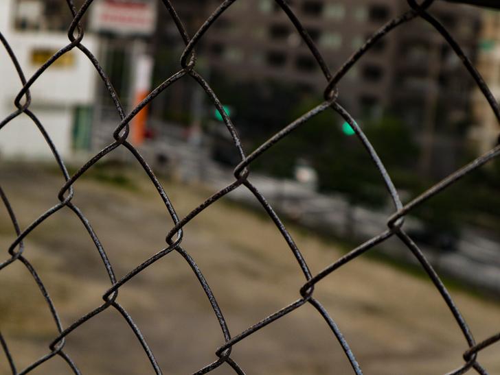 フェンス越しの世界