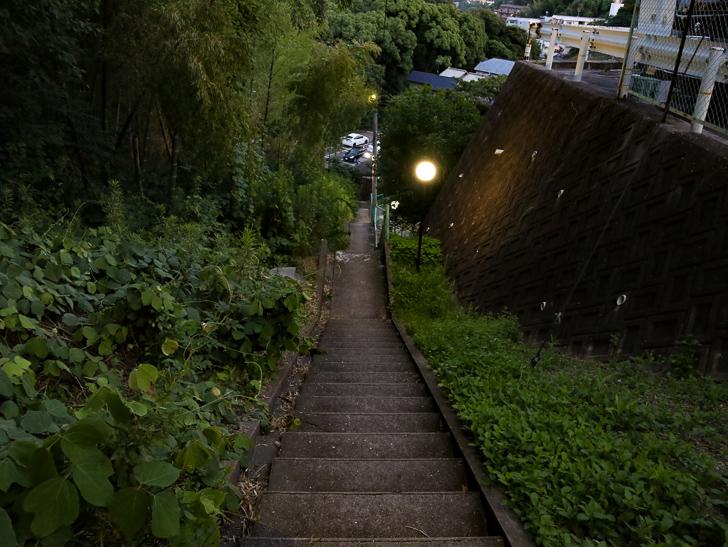 抜け道(階段)