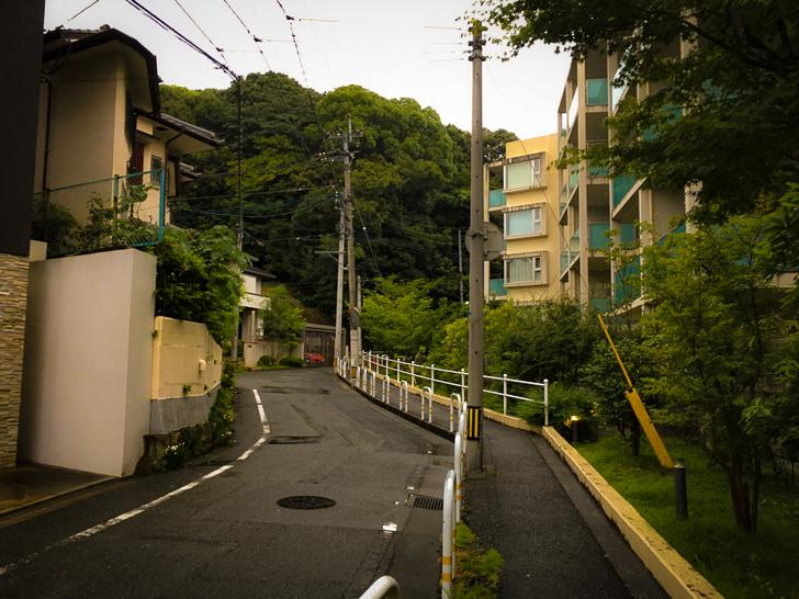 住宅街(緑が多くなってきた)